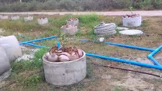 бесплатная откачка воды без электричества 1...