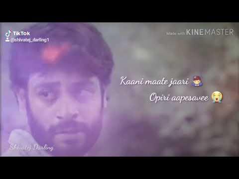 Gayam Chesesave Aina Bhaade Lede    Pilla Pillagadu Web Series Breakup Song
