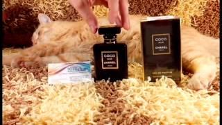 видео Chanel Coco парфюмированная вода 100 ml. (Шанель Коко)