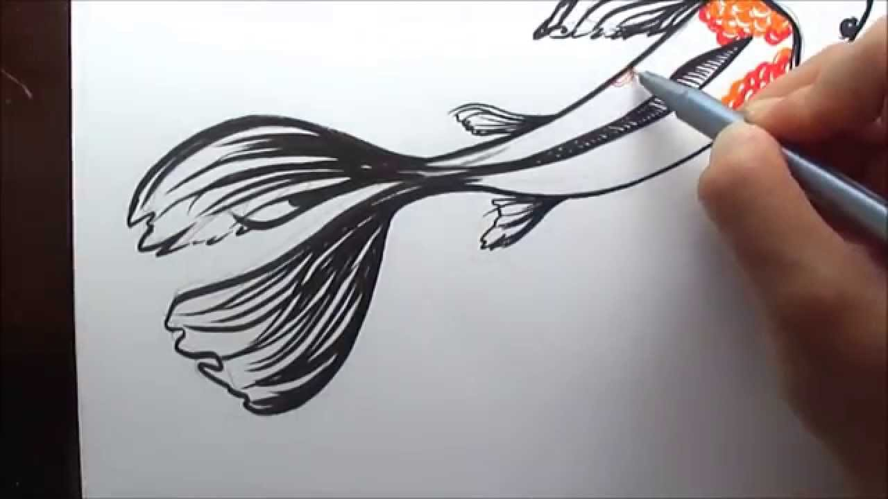 Uncategorized How To Draw A Koi Fish how to draw a koi fish simple and easy illustration youtube