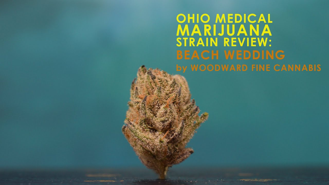 Beach Wedding Ohio Medical Marijuana Strain Review 420ohio