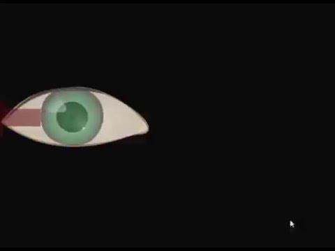 4 Упражнение - Движение глазами