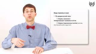Обществознание (ЕГЭ). Урок 25. Право в системе социальных норм. Правовая норма