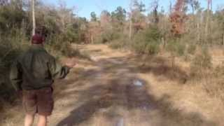 Texas Land for Sale -  9.3 Acres - Hunters Paradise, by Lake Livingston, Onalaska, TX