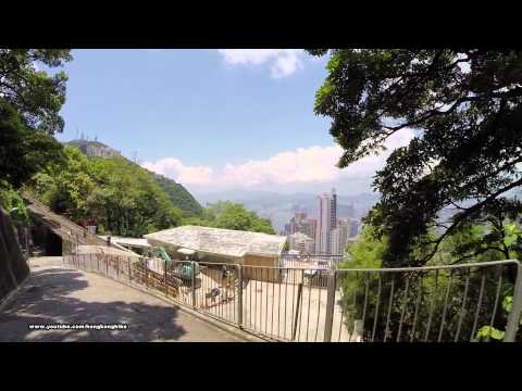 【Hong Kong Hiking】Trail 304 (Plantation Road)