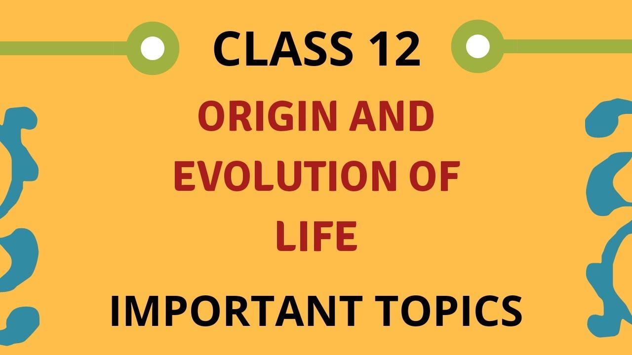 evolution class 12