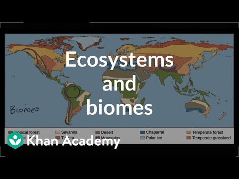 Ecosystems and biomes  | Ecology | Khan Academy