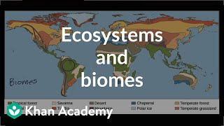 Ecosystems and biomes  | Ecology | Khan Academy thumbnail