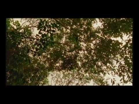 Trailer do filme Vermelho Como o Céu