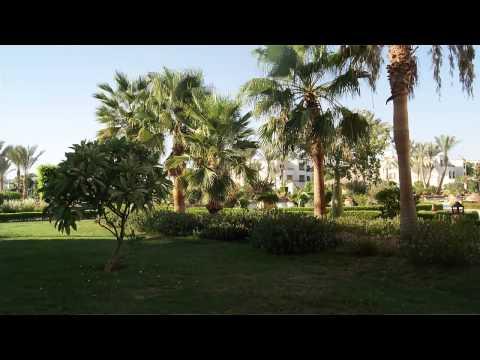 Египет Шарм-эль-Шейх отель Regency Plaza Aqua Park & Spa
