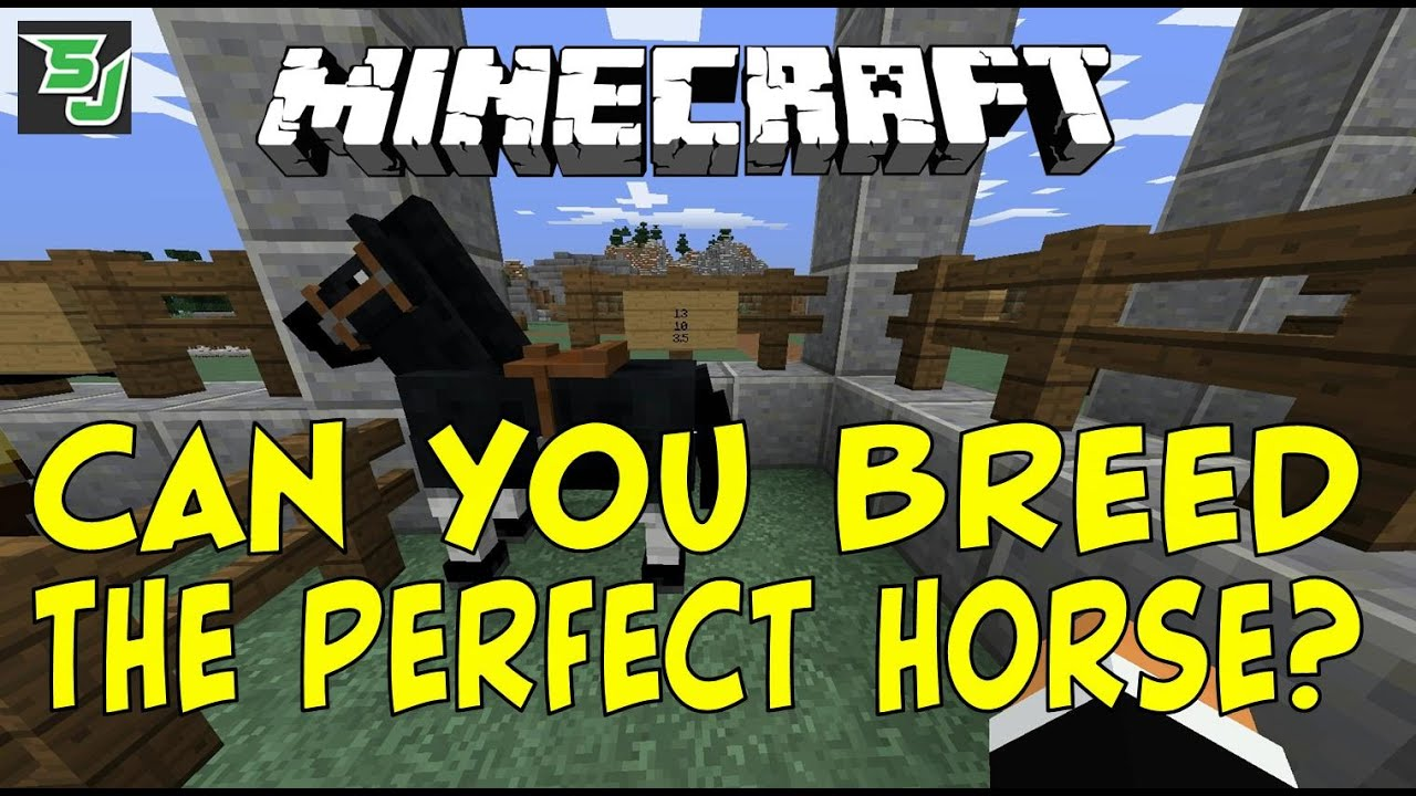 Minecraft Can You Breed The Perfect Horse Youtube
