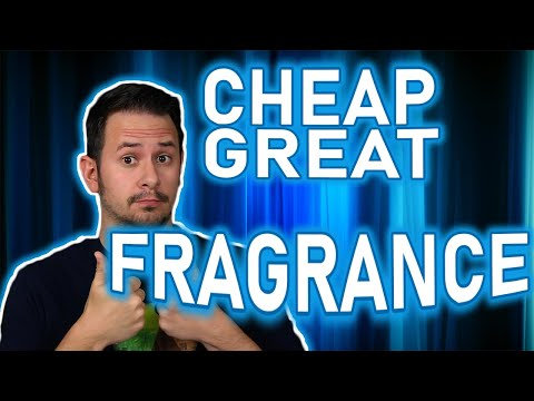 GREAT FRAGRANCE UNDER $20 | KARL LAGERFELD BOIS DE VETIVER