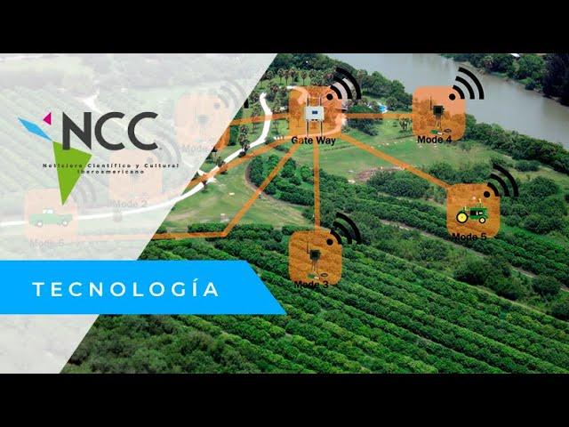 SmartAgri, la plataforma que detecta los hongos en las cosechas