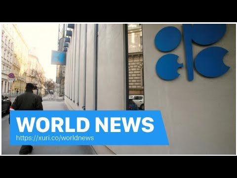 World News - OPEC began working on the oil supply cut escape strategy: source