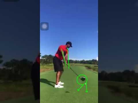 Tiger Woods golf swing: Takeaway (DTL) latest 10/15/17
