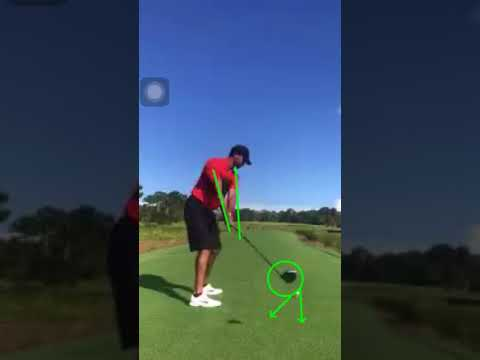 Tiger Woods golf swing: Takeaway (DTL) latest 10/15/17
