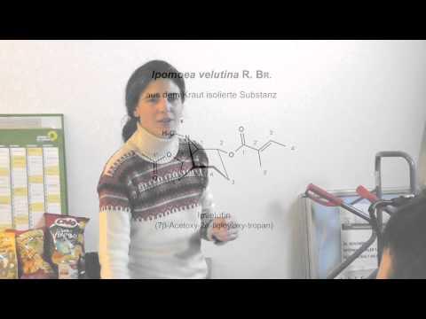 Neuartige Alkaloide u.a. Stoffe in Winden - Dr. Sonja Ott - LAG Drogenpolitik Berlin