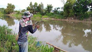 ตกปลาหน้าดินคลองธรรมชาติ หมายนี้น้ำลงเกิดคาด #น้ำลงปลาใหญ่ไปหยู่ไหน คนพื้นที่บอก หยากรู้ดูให้จบคับ