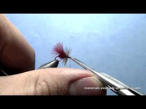 12 Kens Crazy Ants Dry Fly Fishing Ant Pattern Black or Red