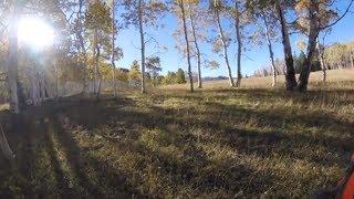Lost Footage Vlogmas: Scouting for Elk in Utah