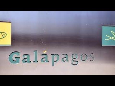 AEX vandaag, Expirerende opties en Galapagos  | Beursnieuws | 15-12-2017
