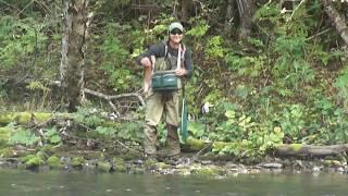 Ловля чебака на реках приморского края