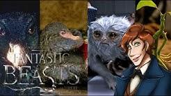 9 Kreaturen aus FANTASTIC BEASTS & die GEFAHR dahinter!