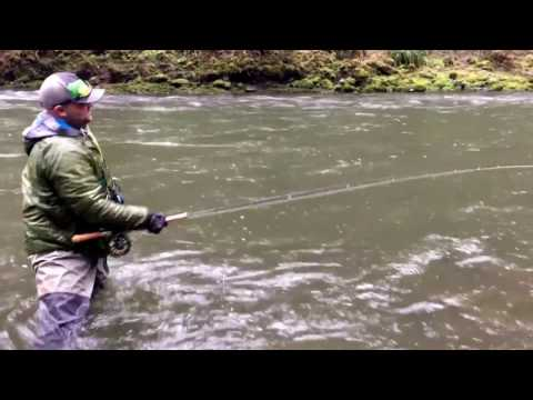 Choosing a sink tip when swinging flies for winter steelhead
