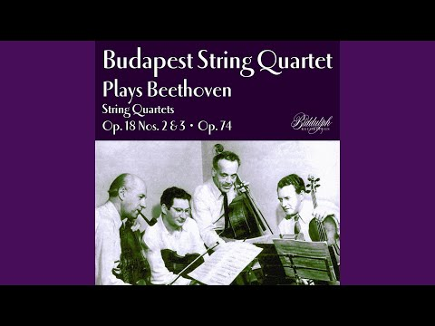 String Quartet In G Major, Op. 18 No. 2: IV. Allegro Molto Quasi Presto