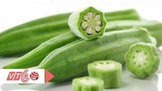 Đậu bắp: Nguồn dinh dưỡng kỳ diệu  | VTC
