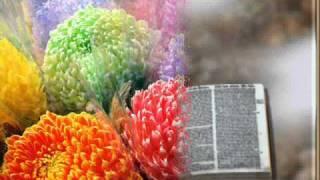 de colores-joan baez.wmv
