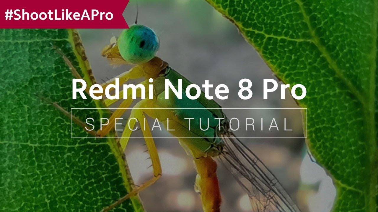 Shootlikeapro Redmi Note 8 Pro How To Take Great Macro Shots Youtube