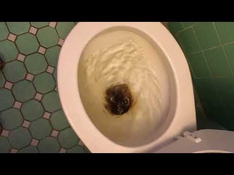 Fix Slow Flushing Toilet