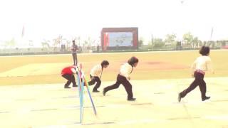a m world school sports day girls under hurdle race
