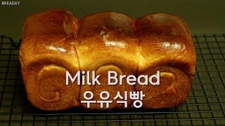 [베이킹은 처음이라] #2 우유식빵 만들기 - 초보 베…