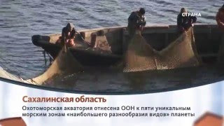 видео Сахалинская область / Государственная программа переселения / Русский век