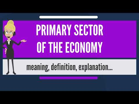 What is PRIMARY SECTOR OF THE ECONOMY? What does PRIMARY SECTOR OF THE ECONOMY mean?