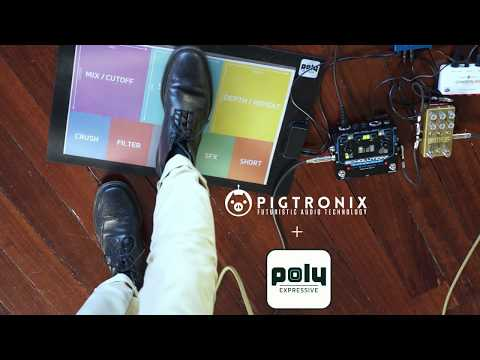 Poly Expressive controlling the Pigtronix Echolution 2 Ultra Pro
