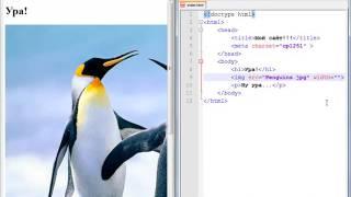 Программирование с нуля от ШП - Школы программирования Урок 8 Часть 5 Html css Онлайн курсы 1с Java