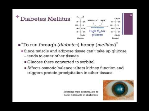 152-Obesity & Diabetes