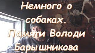 Рассказы о собаках памяти Володи Барышникова