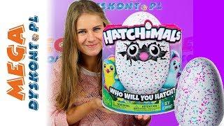 Hatchimals • Interaktywne MEGA jajko • Spin Master
