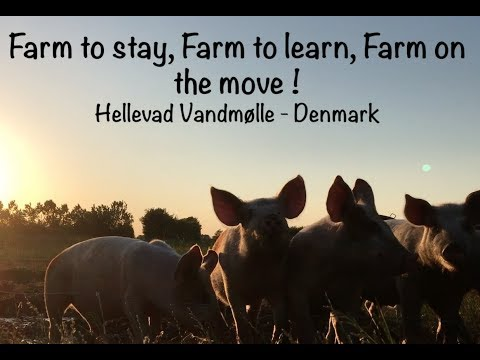 Farm to stay, farm to learn, farm on the move ! Hellevad Van