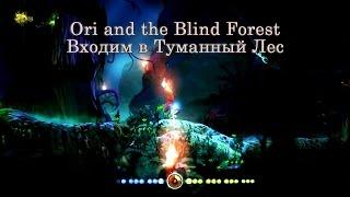 Ori and the Blind Forest Часть 15 Входим в Туманный Лес