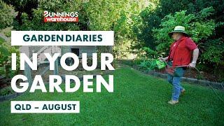 Gardening in August | QLD | Bunnings Garden Diary