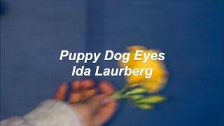 Puppy Dog Eyes - Ida Laurberg (Lyrics)