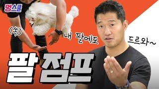 강아지 '팔 점프' 해보개|강형욱의 멍스쿨