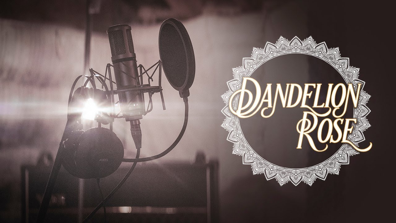 Dandelion Rose (Dan James) - The Night You Came Around