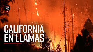 Incendio en California ya devoró una superficie equivalente a Chicago, EE.UU.  - El Espectador