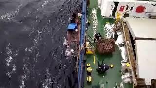 Спасение моряков из КНДР в Японском море
